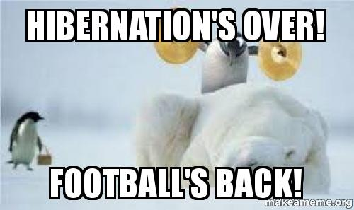 hibernations-over-footballs